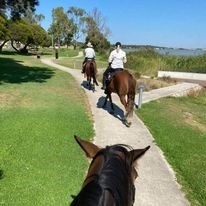 Meningie Riding Club